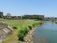 旭川第1緑地