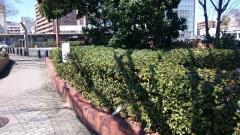 千種駅前街園