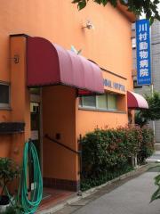 川村動物病院