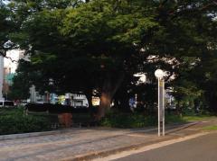 「小町」バス停留所