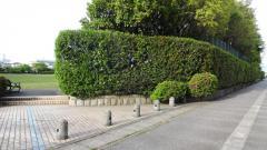 中島北公園