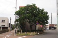 中小田井街園