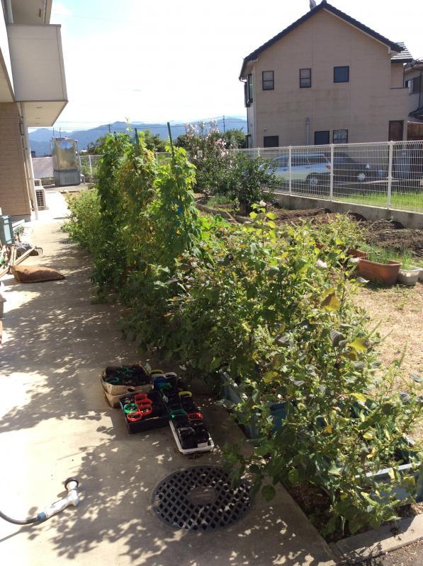 施設内の菜園