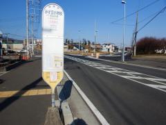 「みずほ小学校」バス停留所
