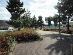 第11号りんくう松原南緑地