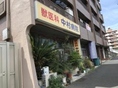 獣医科中村病院