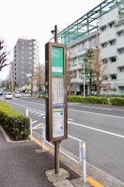 「原宿外苑中学校前」バス停留所