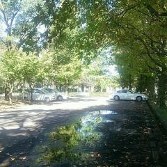 多布施川河畔公園
