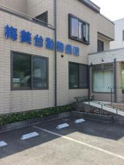 梅美台動物病院