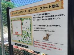 保木間公園