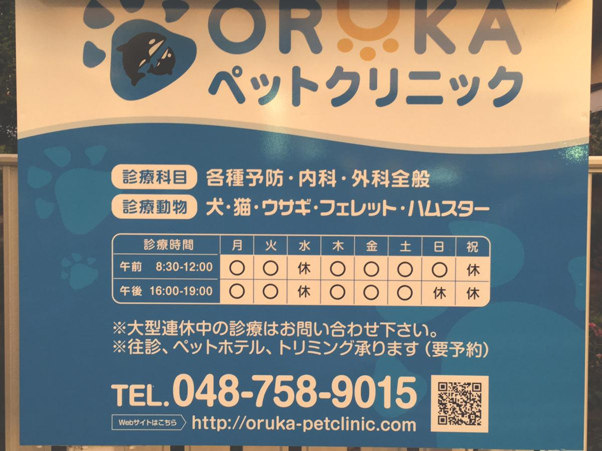 ORUKAペットクリニック_看板