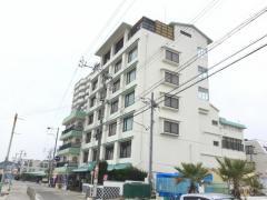 浜辺のホテル松涛