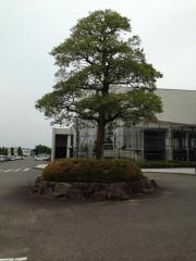 美濃加茂市文化会館