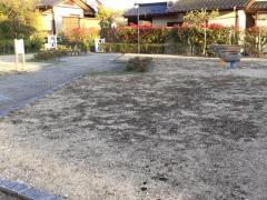 コナラ緑地