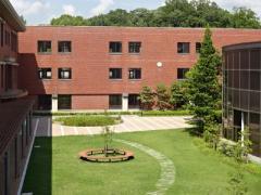 同志社国際高校