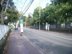「片平丁小学校前」バス停留所