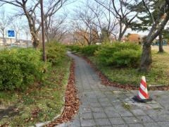 前谷地近隣公園