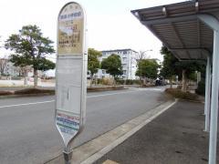 「勝原小学校前」バス停留所