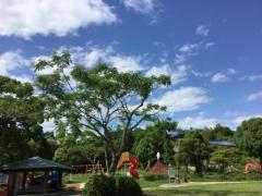 春野総合運動公園陸上競技場