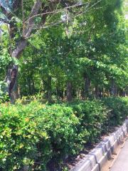 牛川遊歩公園