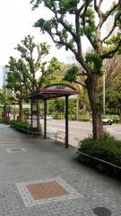 「十二社池の上」バス停留所