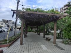 東川緑地公園