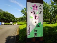 上古沢緑地