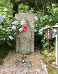 矢田寺(金剛山寺)