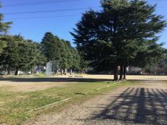 蚕糸記念公園