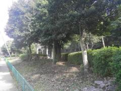 緑地第4号新郷工業団地緩衝緑地