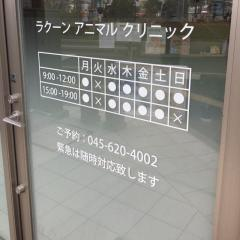 Racoon Animal Clinic
