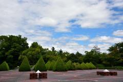 芸術の森公園