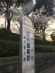 「目白警察前」バス停留所
