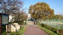 五ケ丘公園