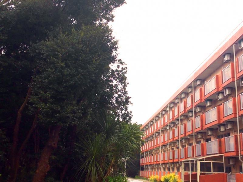 建物外観と中庭