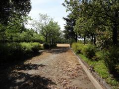 上冨居公園