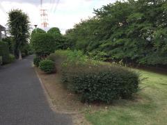 吉田新町緑地