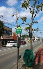 「東新町」バス停留所