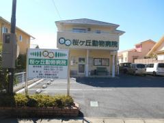 桜ヶ丘動物病院