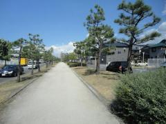 第9号りんくう笠松南緑地
