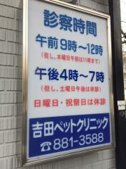 ヨシ田ペットクリニック_看板